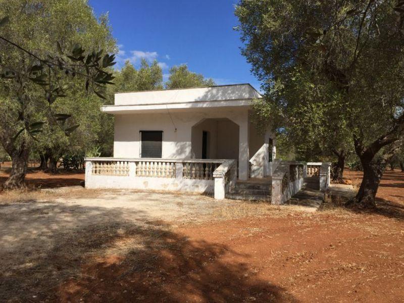 Great casa campagna vendita con terreno uliveto with casa - Piscina francavilla fontana ...