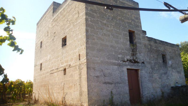 Casa di campagna in vendita a Francavilla Fontana con vigneto