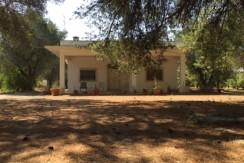 Villa in vendita 4 vani e servizi con garage, Francavilla Fontana