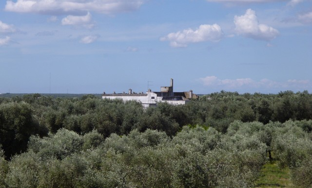 a view of the masseria