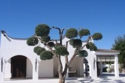 villa con piscina vendita francavilla fontana