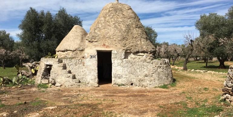 Trulli in vendita a Villa Castelli - Puglia con uliveto, da ristrutturare