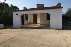 Villa in vendita a Francavilla Fontana con uliveto e frutteto