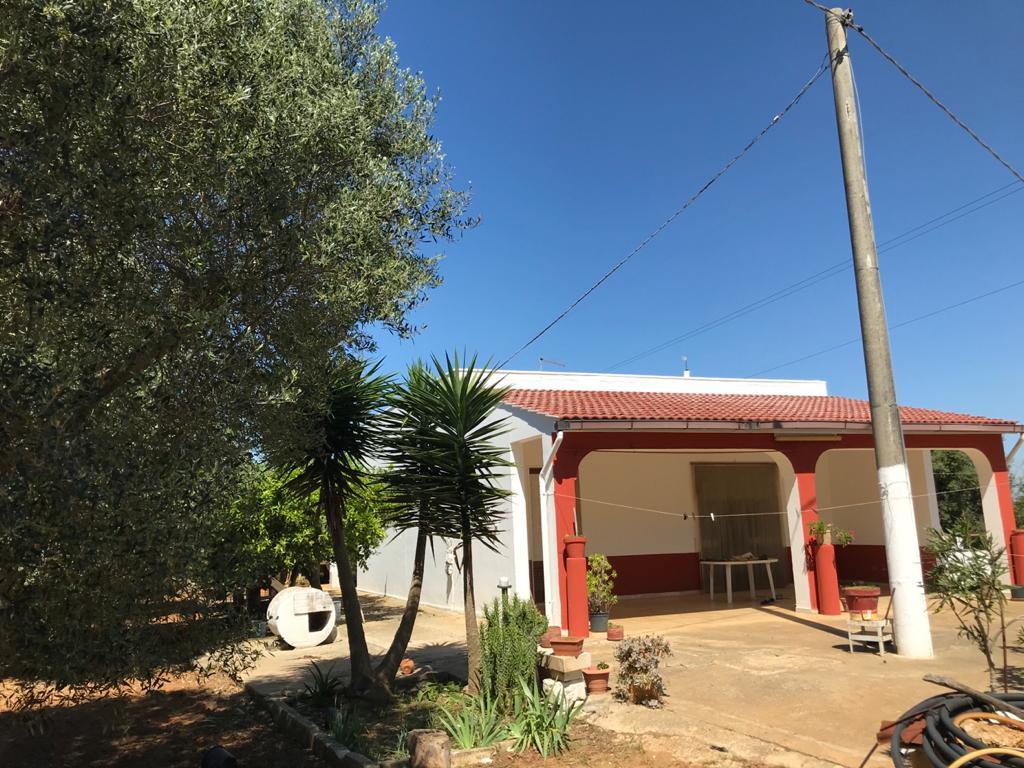 Casa di campagna in vendita con frutteto e uliveto