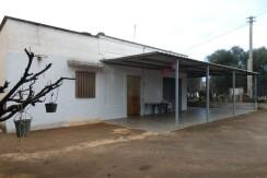 Casa di campagna in vendita Francavilla Fontana, frutteto e uliveto